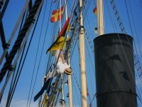 Chairman's daughter following a seafaring tradition of hanging upside  down from the rigging on July 11th